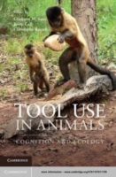 Tool Use in Animals
