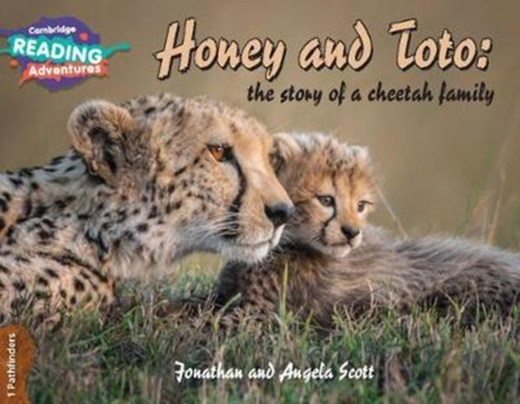 Honey and Toto: The Story of a Cheetah F
