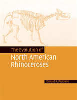 The Evolution of North American Rhinocer