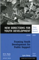 Framing Youth Development for Public Sup