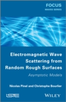 Electromagnetic Wave Scattering from Ran