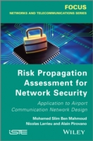 Risk Propagation Assessment for Network