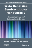 Wide Band Gap Semiconductor Nanowires 2