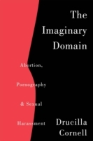 Imaginary Domain