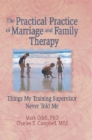 Practical Practice of Marriage and Famil