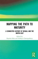 Mapping the Path to Maturity
