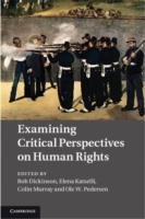 Examining Critical Perspectives on Human