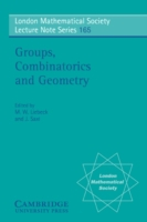 Groups, Combinatorics and Geometry