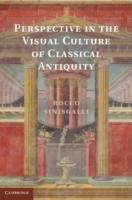 Perspective in the Visual Culture of Cla