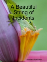 Beautiful String of Incidents