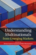 Understanding Multinationals from Emergi