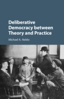 Deliberative Democracy between Theory an