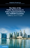 Role of the Public Bureaucracy in Policy