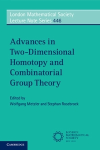 Advances in Two-Dimensional Homotopy and