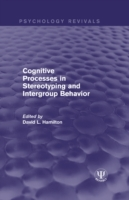 Cognitive Processes in Stereotyping and