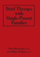 Brief Therapy With Single-Parent Familie