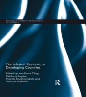 Informal Economy in Developing Countries