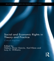 Social and Economic Rights in Theory and