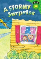 Stormy Surprise