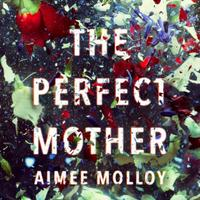 The Perfect Mother: A gripping thriller with a nail-biting t