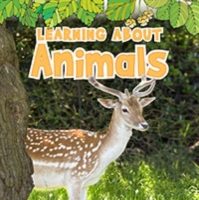 Learning About Animals
