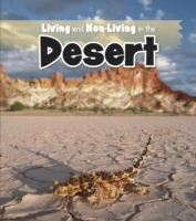 Living and Non-living in the Desert