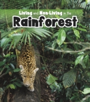 Living and Non-living in the Rainforest