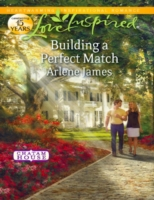Building a Perfect Match (Mills & Boon L