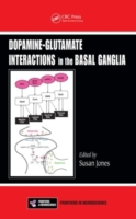 Dopamine - Glutamate Interactions in the