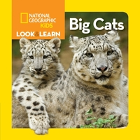Look and Learn: Big Cats