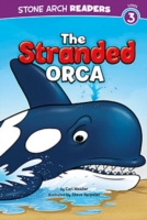Stranded Orca