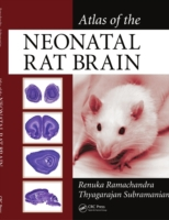 Atlas of the Neonatal Rat Brain