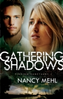 Gathering Shadows (Finding Sanctuary Boo