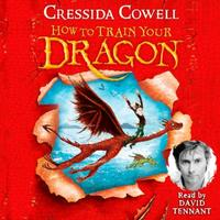 How to Train Your Dragon: How To Train Y