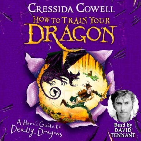 How to Train Your Dragon: A Hero's Guide
