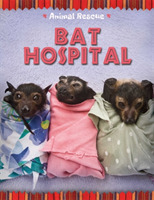 Animal Rescue: Bat Hospital