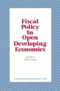 Fiscal Policy in Open Developing Economi