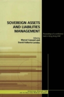 Sovereign Assets and Liabilities Managem