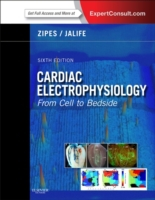 Cardiac Electrophysiology: From Cell to