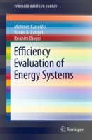 Efficiency Evaluation of Energy Systems