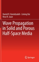 Wave Propagation in Solid and Porous Hal