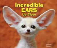 Incredible Ears Up Close