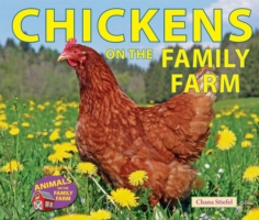 Chickens on the Family Farm