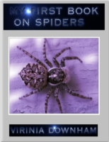 My First Book On Spiders