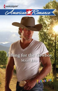 Falling for the Cowboy (Mills & Boon Ame