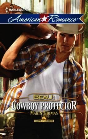 Beau: Cowboy Protector (Mills & Boon Ame
