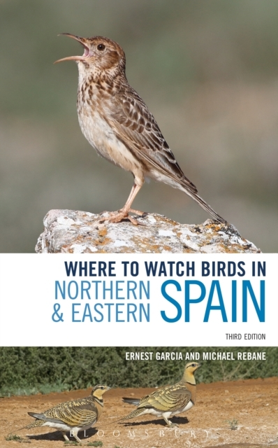 Where to Watch Birds in Northern and Eas