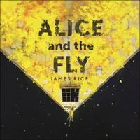 Alice and the Fly