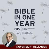 NIV Audio Bible in One Year (Nov-Dec): read by David Suchet