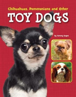 Chihuahuas, Pomeranians and Other Toy Do